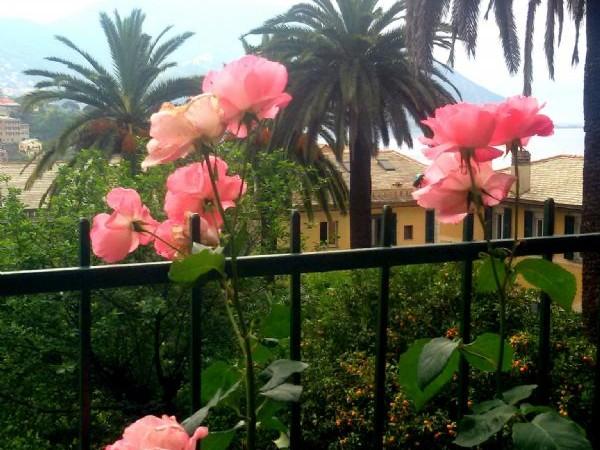 Appartamento in vendita a Recco, Montefiorito, Con giardino, 45 mq - Foto 10