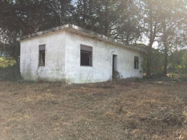 Rustico/Casale in vendita a Sant'Anastasia, 8000 mq - Foto 1