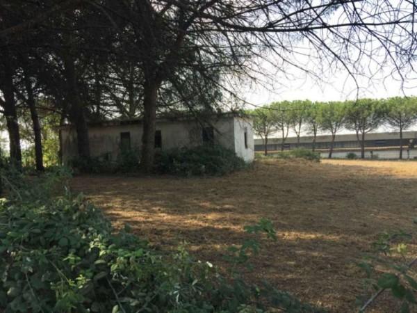 Rustico/Casale in vendita a Sant'Anastasia, 8000 mq - Foto 7