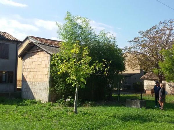 Casa indipendente in vendita a Gambettola, Centro Città, 220 mq