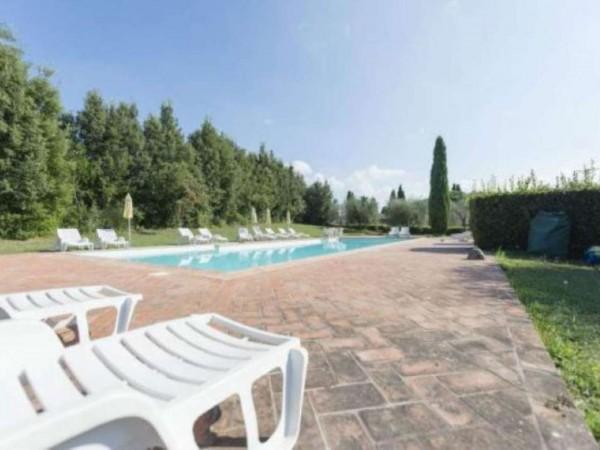 Rustico/Casale in vendita a Montaione, Arredato, con giardino, 50 mq - Foto 16