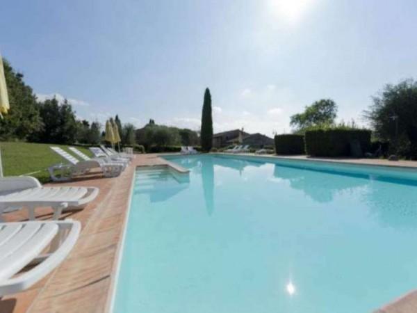 Rustico/Casale in vendita a Montaione, Arredato, con giardino, 50 mq - Foto 15