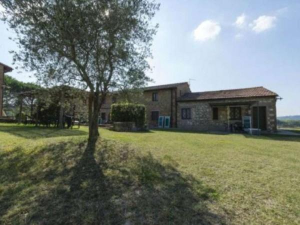 Rustico/Casale in vendita a Montaione, Arredato, con giardino, 50 mq - Foto 17