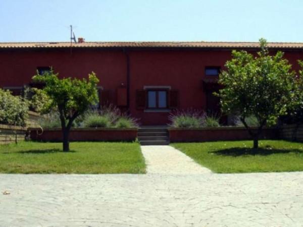 Villa in vendita a Roma, Ponte Galeria, Con giardino, 170 mq - Foto 16
