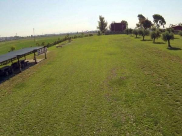 Villa in vendita a Roma, Ponte Galeria, Con giardino, 140 mq - Foto 5
