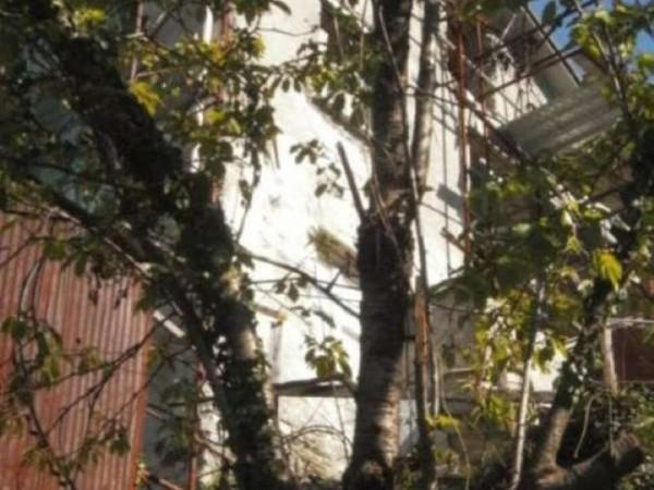 Rustico/Casale in vendita a Avegno, Salto, Con giardino, 300 mq - Foto 21