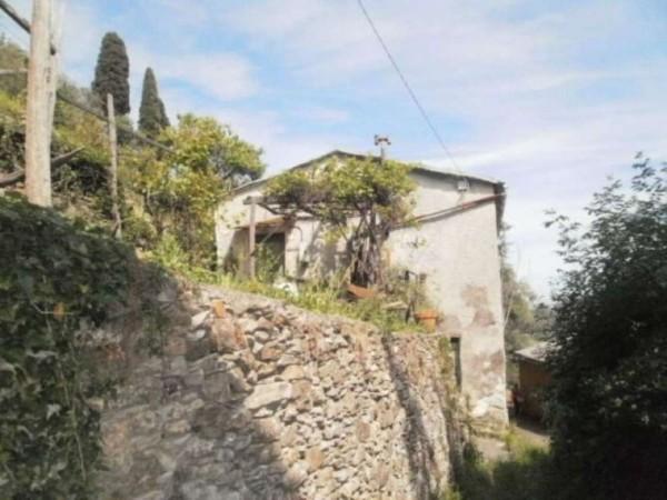 Rustico/Casale in vendita a Camogli, Ruta-bana, Con giardino, 195 mq - Foto 1