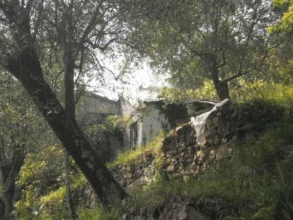Rustico/Casale in vendita a Camogli, Ruta-bana, Con giardino, 195 mq - Foto 20