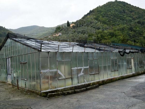 Casa indipendente in vendita a Recco, San Rocco, Con giardino, 150 mq - Foto 25