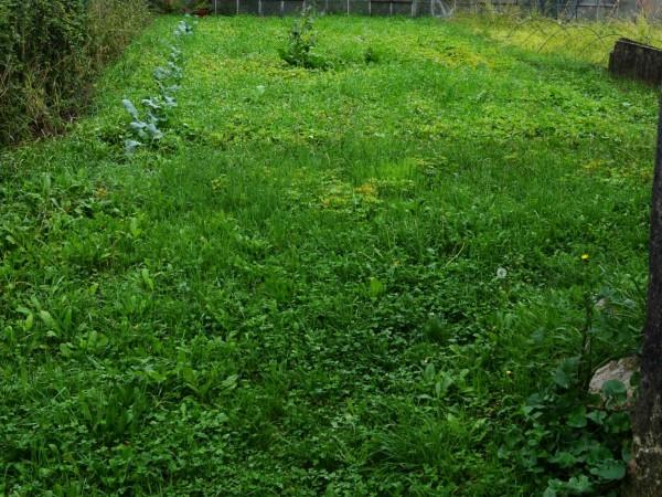 Casa indipendente in vendita a Recco, San Rocco, Con giardino, 150 mq - Foto 28