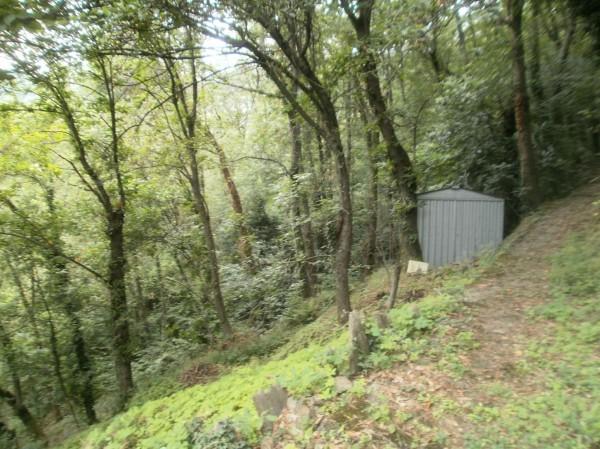 Rustico/Casale in vendita a Uscio, Borissa, Con giardino, 150 mq - Foto 20
