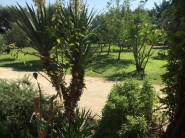 Villa in affitto a Muro Leccese, Contrada Panzanari, Arredato, con giardino, 180 mq - Foto 19