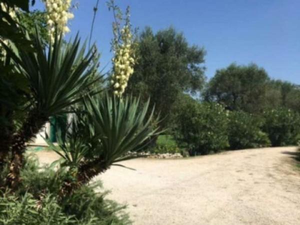 Villa in affitto a Muro Leccese, Contrada Panzanari, Arredato, con giardino, 180 mq - Foto 3
