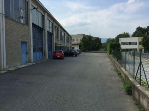 Capannone in affitto a Alpignano, 330 mq - Foto 14
