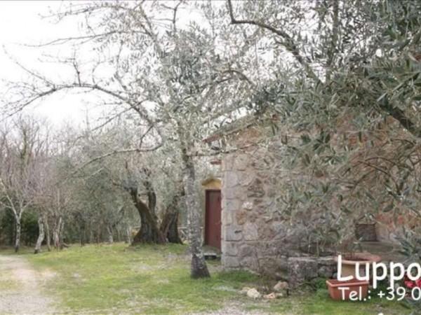 Villa in vendita a Sovicille, Con giardino, 200 mq - Foto 3