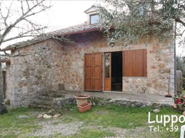 Villa in vendita a Sovicille, Con giardino, 200 mq - Foto 8