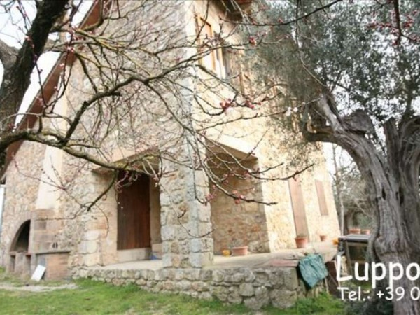 Villa in vendita a Sovicille, Con giardino, 200 mq - Foto 5