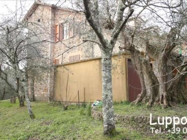 Villa in vendita a Sovicille, Con giardino, 200 mq - Foto 7