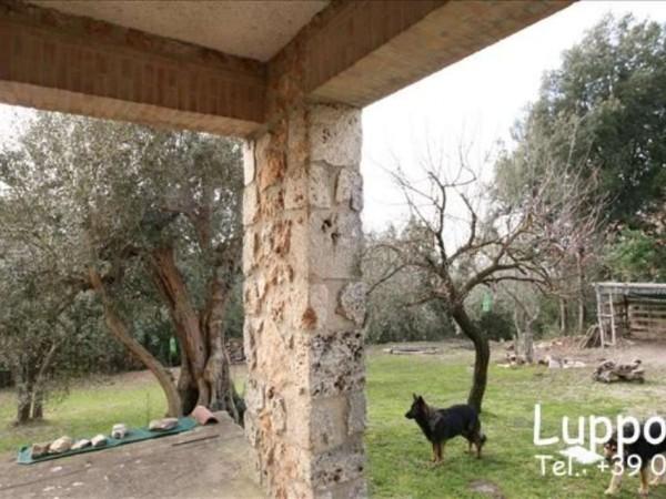 Villa in vendita a Sovicille, Con giardino, 200 mq - Foto 4