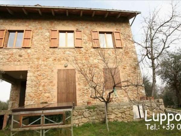 Villa in vendita a Sovicille, Con giardino, 200 mq