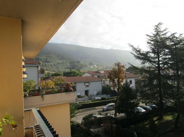 Appartamento in vendita a Prato, Con giardino, 238 mq - Foto 1