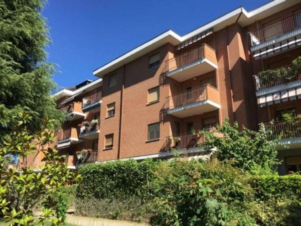 Appartamento in vendita a Alpignano, Belvedere, Con giardino, 63 mq