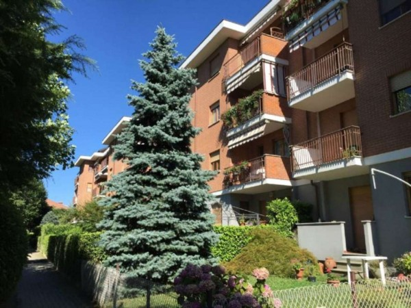 Appartamento in vendita a Alpignano, Belvedere, Con giardino, 63 mq - Foto 20