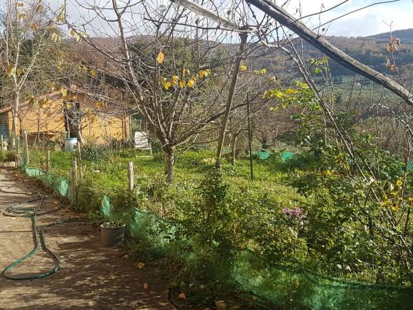Villa in vendita a Fiesole, 500 mq - Foto 5
