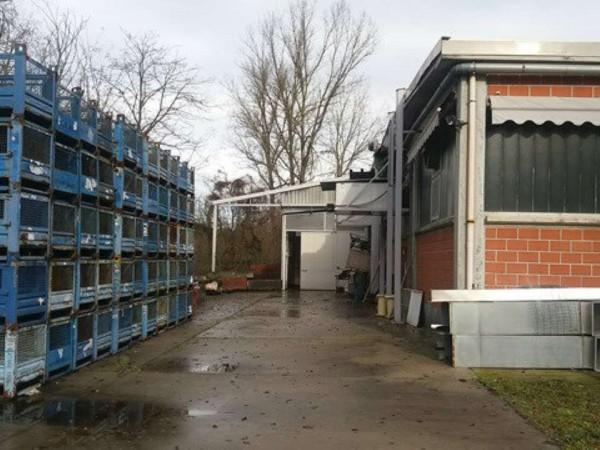Capannone in vendita a Portacomaro, 1500 mq - Foto 19