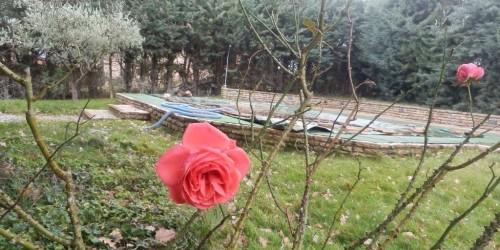 Locale Commerciale  in vendita a Magione, Borgogiglione, Con giardino, 110 mq - Foto 4
