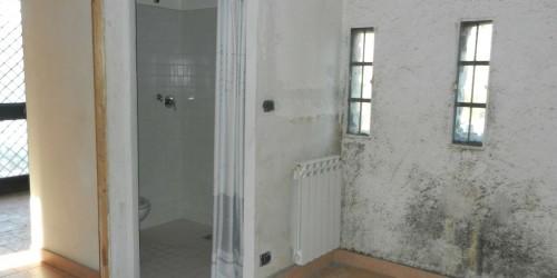 Casa indipendente in vendita a Avigliana, Con giardino, 95 mq - Foto 16