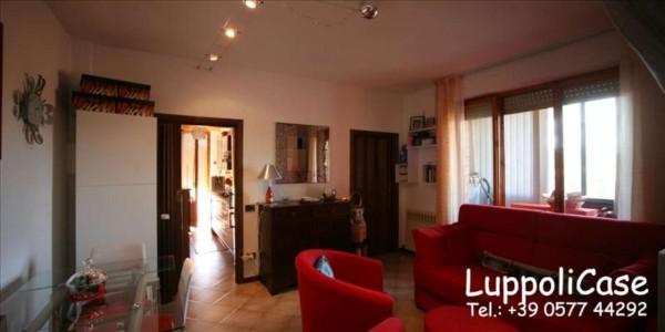 Appartamento in vendita a Castelnuovo Berardenga, 63 mq