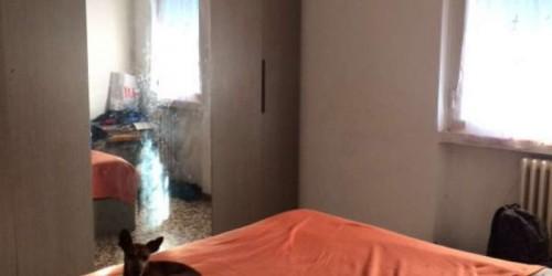 Appartamento in vendita a Cinisello Balsamo, 60 mq - Foto 18