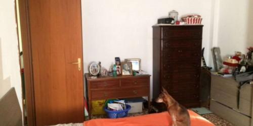 Appartamento in vendita a Cinisello Balsamo, 60 mq - Foto 15