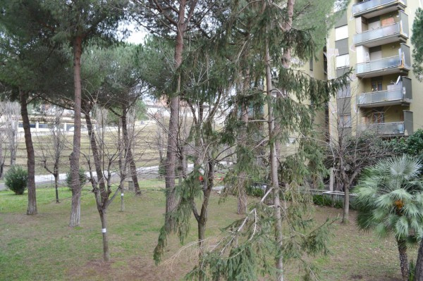 Appartamento in vendita a Roma, Con giardino, 80 mq - Foto 3