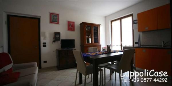 Appartamento in vendita a Sovicille, 60 mq - Foto 15