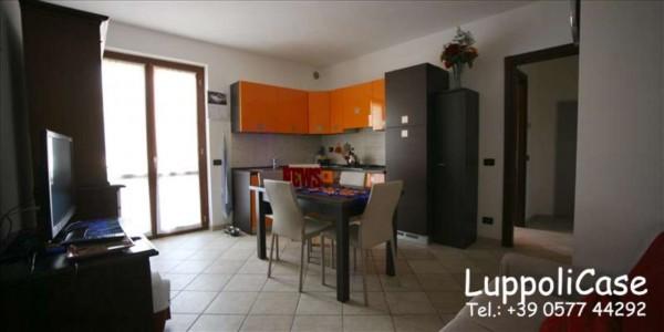 Appartamento in vendita a Sovicille, 60 mq - Foto 20