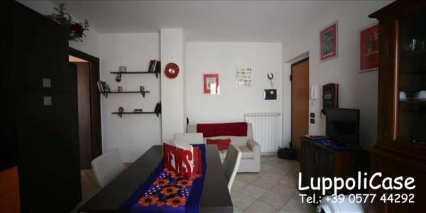 Appartamento in vendita a Sovicille, 60 mq - Foto 17