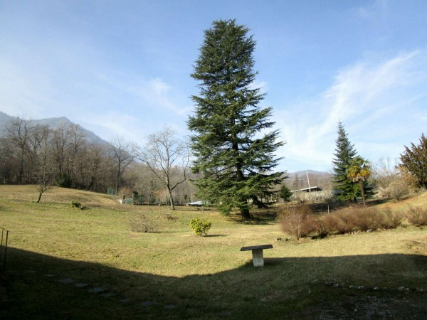 Rustico/Casale in vendita a Cassano Valcuvia, Via Dante, Arredato, con giardino, 800 mq - Foto 39