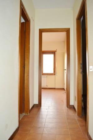 Appartamento in vendita a Roma, Mostacciano, Con giardino, 80 mq - Foto 3