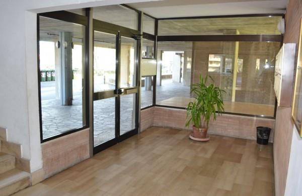 Appartamento in vendita a Roma, Torrino, Con giardino, 65 mq - Foto 15