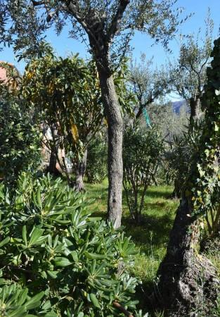 Appartamento in affitto a Recco, Megli, Arredato, con giardino, 70 mq - Foto 23