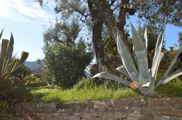 Appartamento in affitto a Recco, Megli, Arredato, con giardino, 70 mq - Foto 27