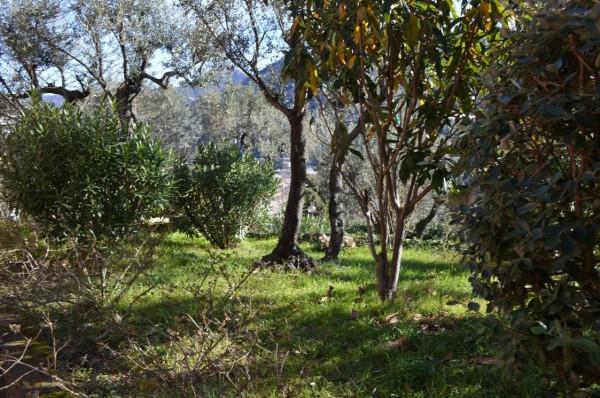 Appartamento in affitto a Recco, Megli, Arredato, con giardino, 70 mq - Foto 26