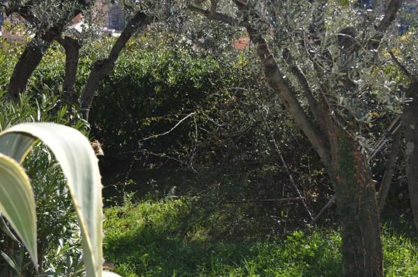 Appartamento in affitto a Recco, Megli, Arredato, con giardino, 70 mq - Foto 20