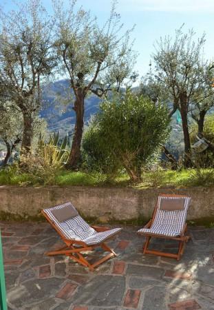 Appartamento in affitto a Recco, Megli, Arredato, con giardino, 70 mq - Foto 28
