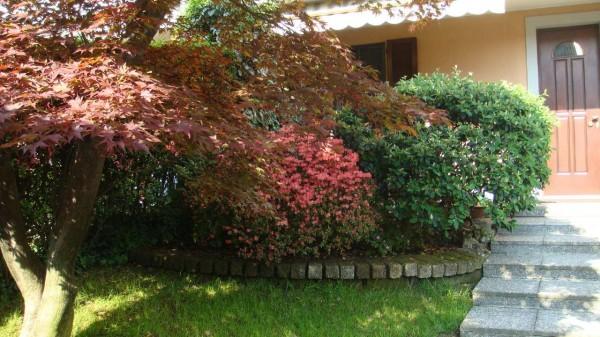 Villetta a schiera in vendita a Buccinasco, I Maggio, Con giardino, 280 mq - Foto 34