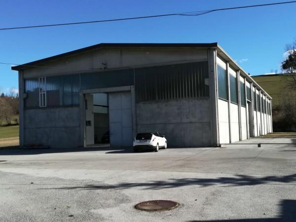 Casa indipendente in vendita a Mondovì, Via Cuneo, Con giardino, 270 mq - Foto 2