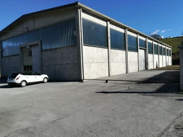 Casa indipendente in vendita a Mondovì, Via Cuneo, Con giardino, 270 mq - Foto 4