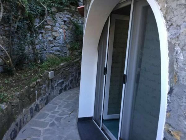 Appartamento in vendita a Zoagli, Marina Di Bardi, Con giardino, 50 mq - Foto 22